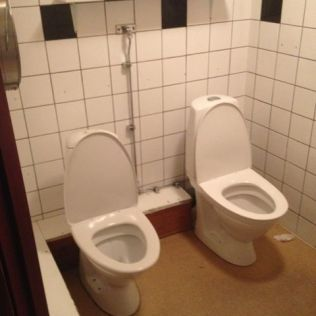 Romantic toilets for two?