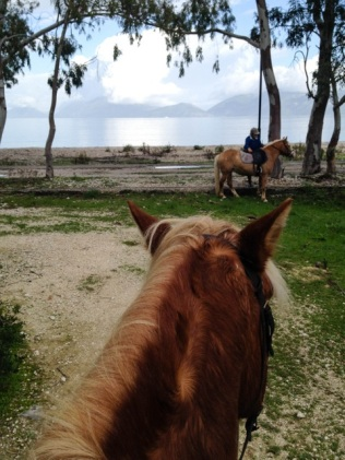 4 hour beach ride, my longest time in the saddle so far.