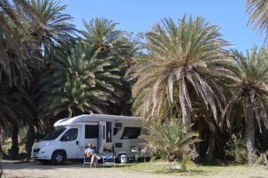 The palm trees at Vai beach.